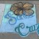 Santa Cruz Flower