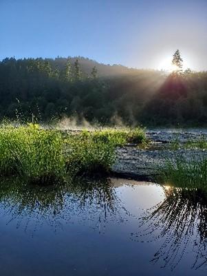 Sunbeam on Pond