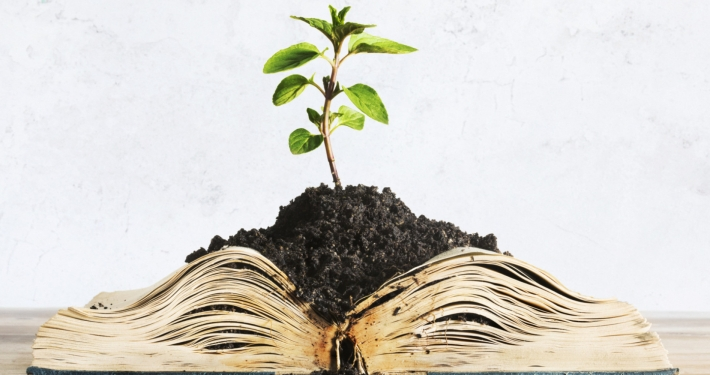 Plant Growing from Book